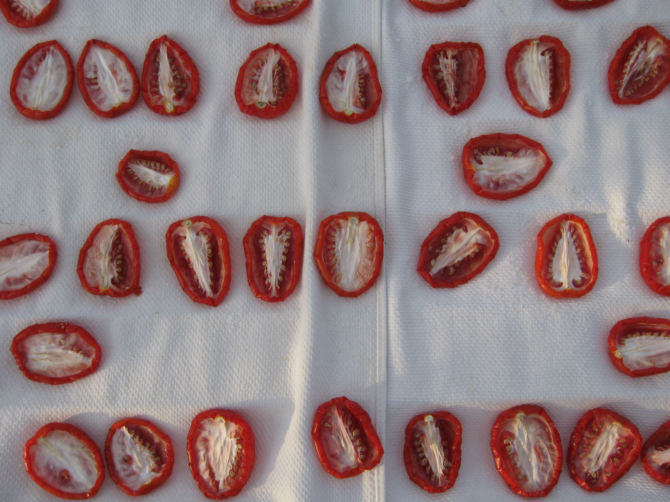 sun_drying_tomatoes_day_2