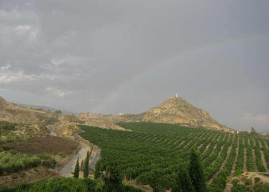 rainbow_saint